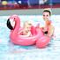 Baby-Float-Flamingo-Shape-Inflatable-Swim-Ring (1).jpg
